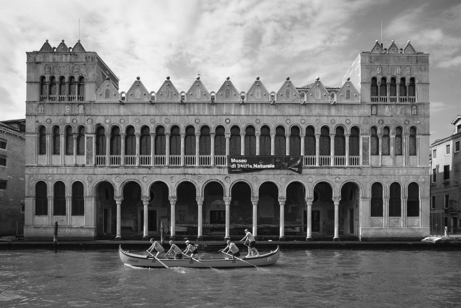 Thierry Secretan - VENISE - protected by IMATAG