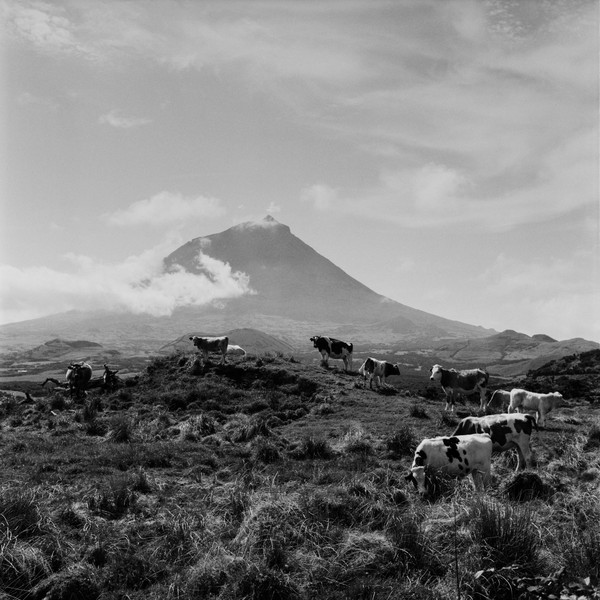Thierry Secretan - The volcano Pico, Azores - The volcano Pico, part of the Azores archipelago,  culminates at 2400 meters in the Atlantic Ocean, 2008 - protected by IMATAG