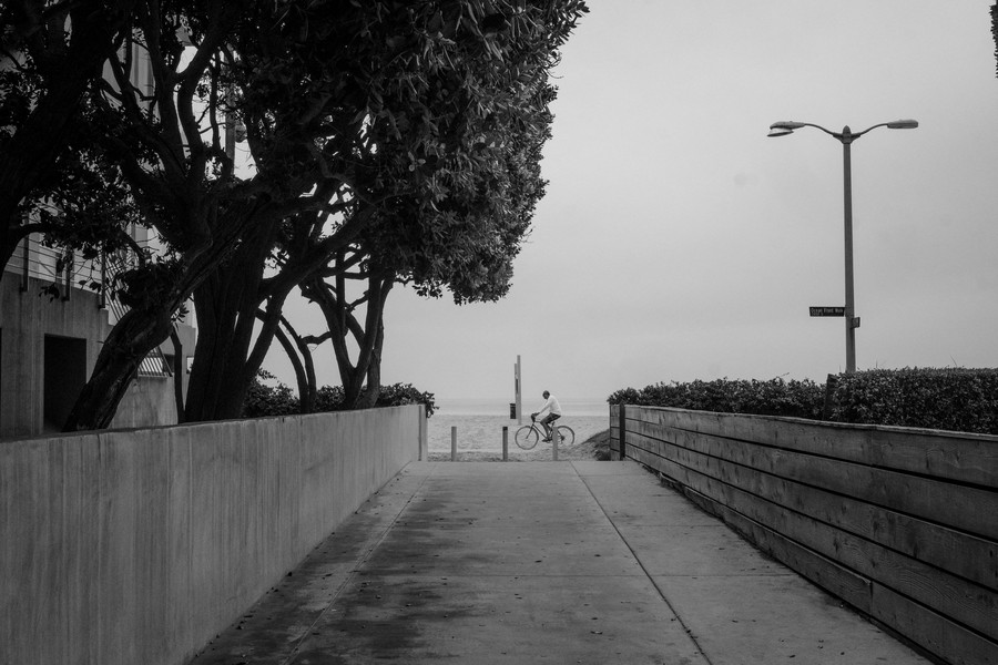 © Thierry Secretan - Los Angeles 2017 - Cycling on Ocean Front Walk, Venice Beach - protected by IMATAG